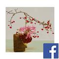 facebook-sogetsu-link